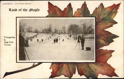 Land of the Maple, Tobogganing in High Park, Toronto