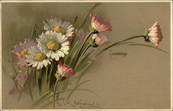 Painting of Pink, White & Yellow Daisies
