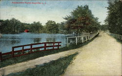 Roosevelt's Pond, Long Island