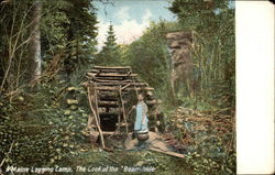 Maine Logging Camp, The Cook at the Bean-hole