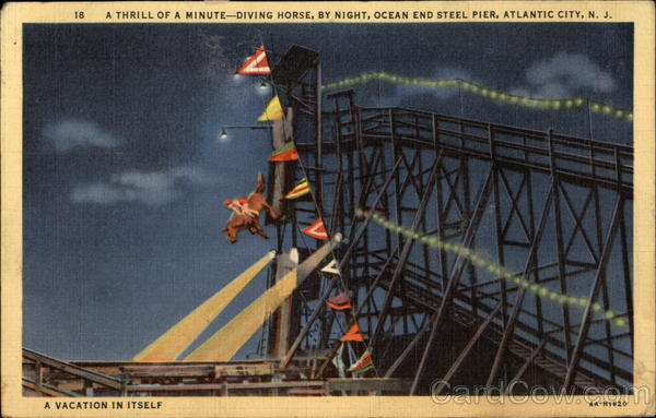 A Thrill a Minute - Diving Horse by Night at Ocean End Steel Pier Atlantic City New Jersey