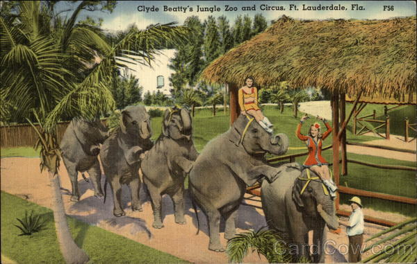 Clyde Beatty's Jungle Zoo and Circus Fort Lauderdale Florida