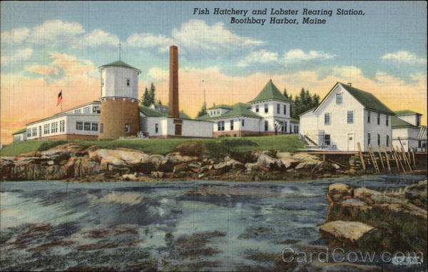 Fish Hatchery and Lobster Rearing Station Boothbay Harbor Maine