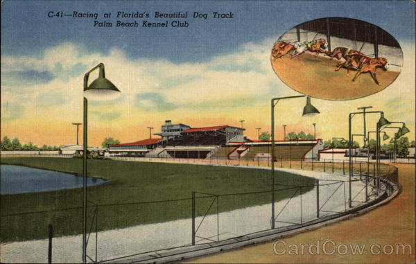 Racing at Florida's Beautiful Dog Track - Palm Beach Kennel Club