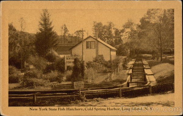 New York State Fish Hatchery, Cold Spring Harbor Long Island