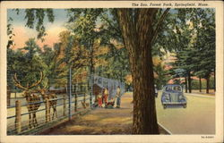 The Zoo, Forest Park