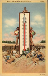 Just the Right Temperature in _____ Florida Postcard