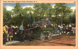 Pony Cart Ride, Prospect Park