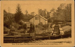 New York State Fish Hatchery, Cold Spring Harbor