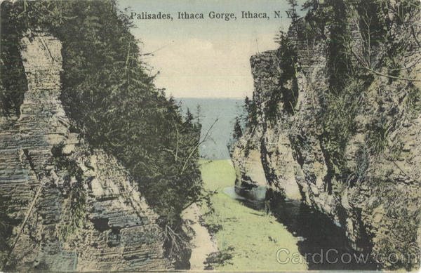Palisades, Ithaca Gorge New York