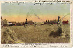 Threshing Wheat In North Dakota