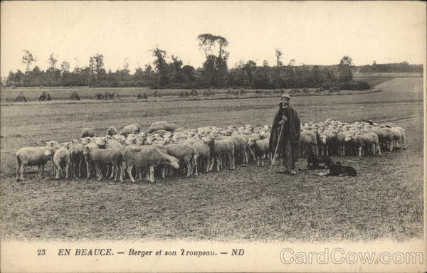 Shepherd with his Flock Beauce France