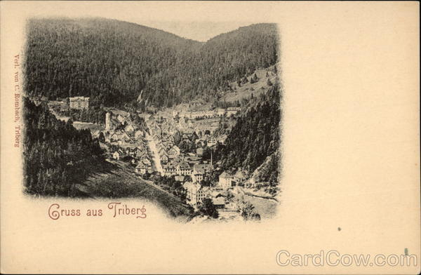 Aerial View of Town Triberg Germany
