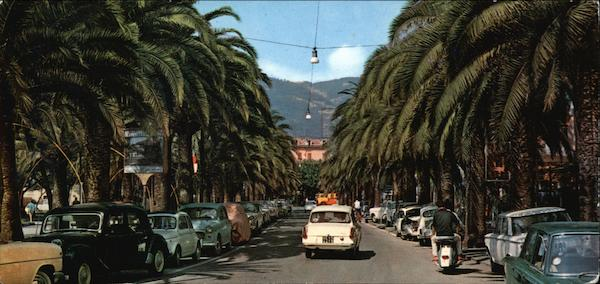 Palm Lined Boulevard Sestri Levante Italy
