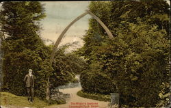The Whale's Jawbone, Connaught Park