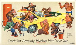 Don't Let Anybody Monkey With Your Car