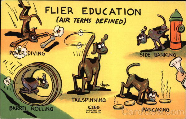 Flier Education (Air Terms Defined) Comic, Funny Dogs