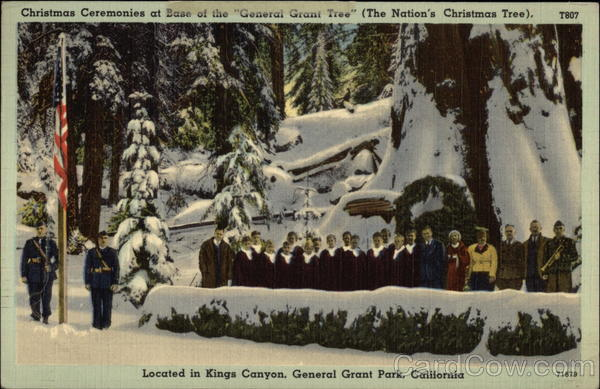 Christmas Ceremonies at base of the General Grant Tree General Grant Park California