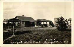 Vintage Photograph of Lobster Pound