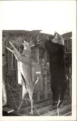 Buck and Bear Carcass hanging