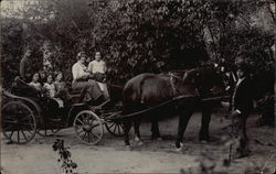 Horses and Buggy with People