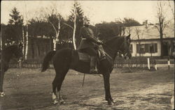 German Military Officer on Horse