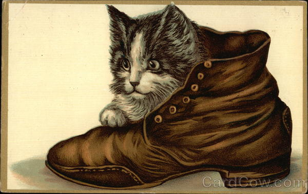 Kitten in a Boot Cats