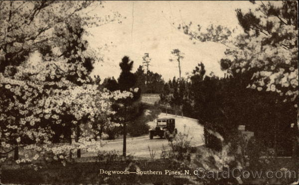 Dogwoods-Southern Pines,N.C Trains, Railroad