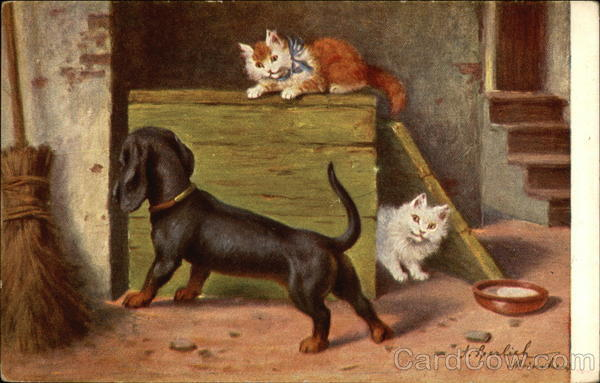 A Black Dachshund and Two Kittens Playing Dachshunds