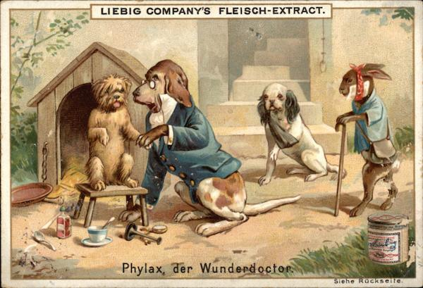 Liebig Company's Fleisch-Extract Advertising