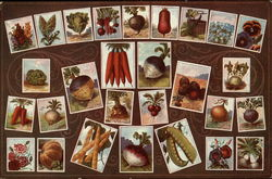 Vegetable and Flowers Illustrated on Cards