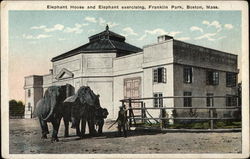 Elephant House and Elephant Exercising, Franklin Park, Boston, Mass