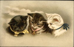 Three Kittens with Yellow, Pink and Blue Ribbons