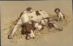 Brown & White Spotted Dog with Five Puppies
