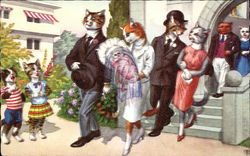 Cats Dressing in Clothing Exiting Church after Christening