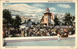 Black Forest, Chicago World's Fair Postcard
