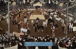 Parade of the Belgians, Dairy Cattle Congress
