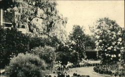 An Old Garden Postcard