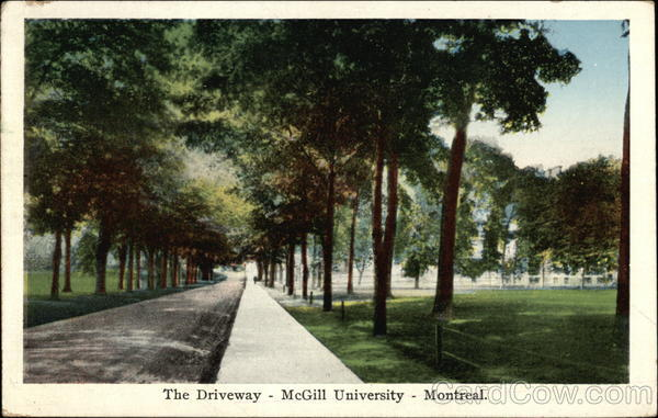 The Driveway - McGill University Montreal Canada Quebec