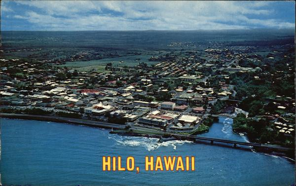 Aerial View of City Hilo Hawaii