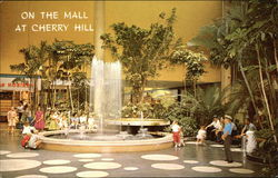 Cherry Hill Shopping Center - Cherry Court