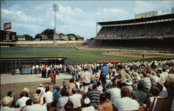 Kansas City Municipal Stadium Postcard