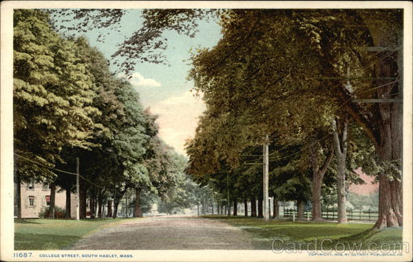View of Tree Lined College Street South Hadley Massachusetts