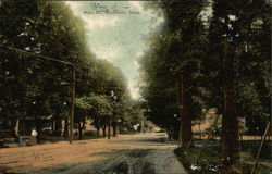 View of Tree Lined Main Street