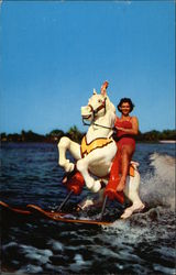Sunshine Springs and Gardens - Water-Skiing Horse