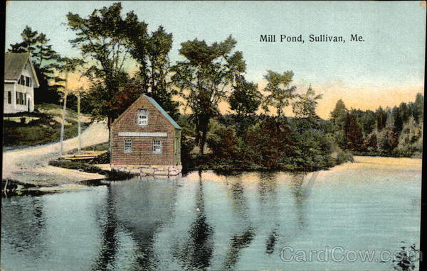 Mill Pond Sullivan Maine