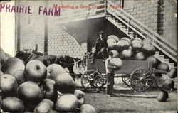 Marketing a Good Crop of Apple, Prairie Farm