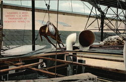 Loading a Mull Aboard U.S. Army Transport