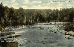 Pool at Middledam