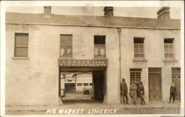 Denny's Yard for Receiving Pigs, Pig Market Limerick Republic of Ireland